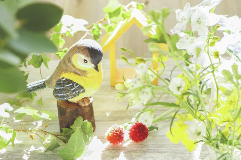 あたたかみがある鳥の画像